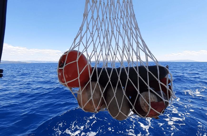 AURORA  &  Andi segeln nach Norden  –  update #1